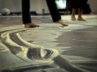 Roots & Evolution Grundlagen der somatischen Kreativität
